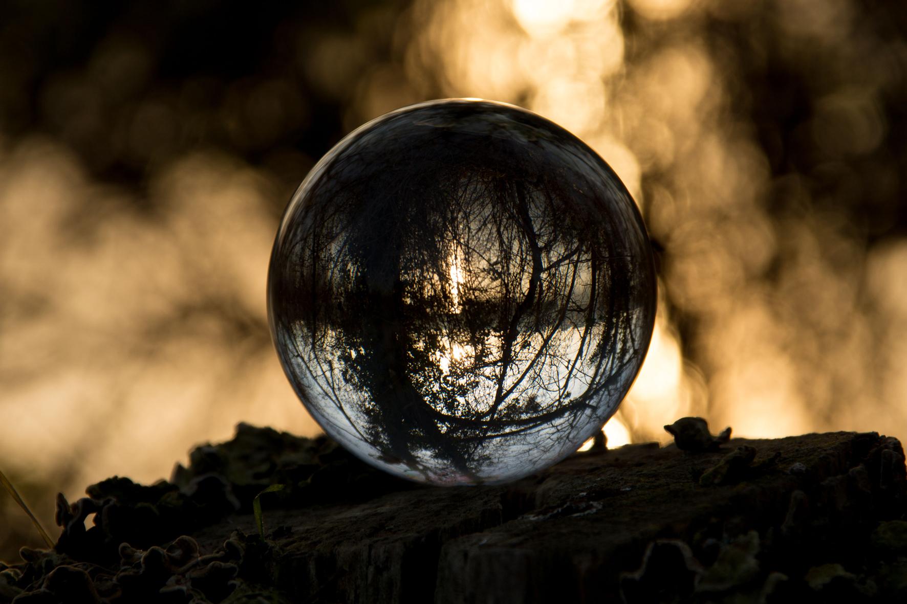 Divination-Isabelle-Drouet-