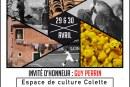 """Palmarès de l'expo """"multitude/accumulation"""" (en couleurs) et """"sur le vif"""" (en noir & blanc) de Villiers sur Orge des 29 & 30 avril 17"""