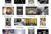 Liste des 24 photos primées dans les expos 2018 et exposées sur le stand du CDP 91 à la Foire de Bièvres le 3 juin 2018