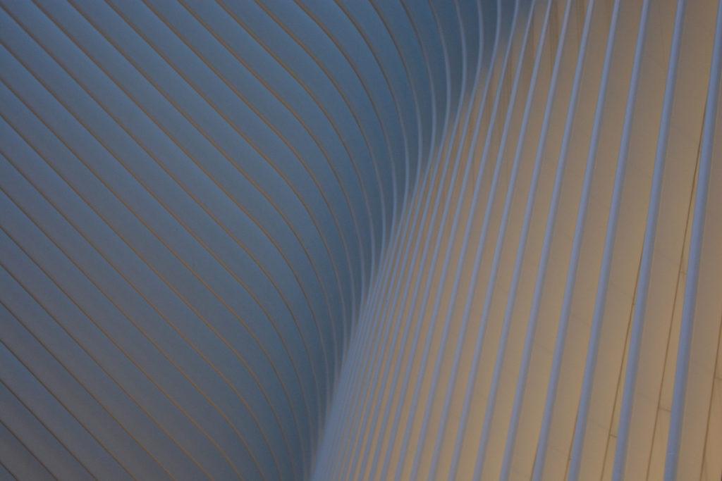 """2ème prix du jury couleur : """"ailes du désir"""" - Eric Vidal-Engaurran / Saclay Visions"""