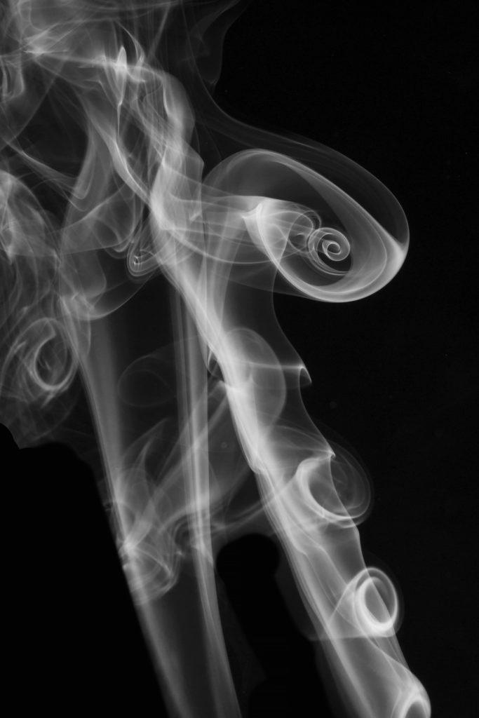 2 ème prix jury Noir et Blanc : « l'escargot », Virginie Loudier, Draveil