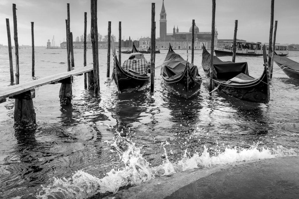 """prix du public nb : Venise """" - Phil Dunbar - Longpont"""