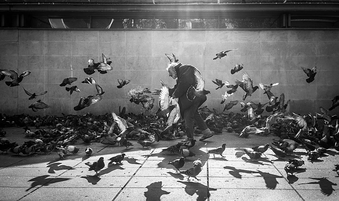 Heurlié-Cyrille-banquet-de-pigeon-1er-prix-public-photo-nb-