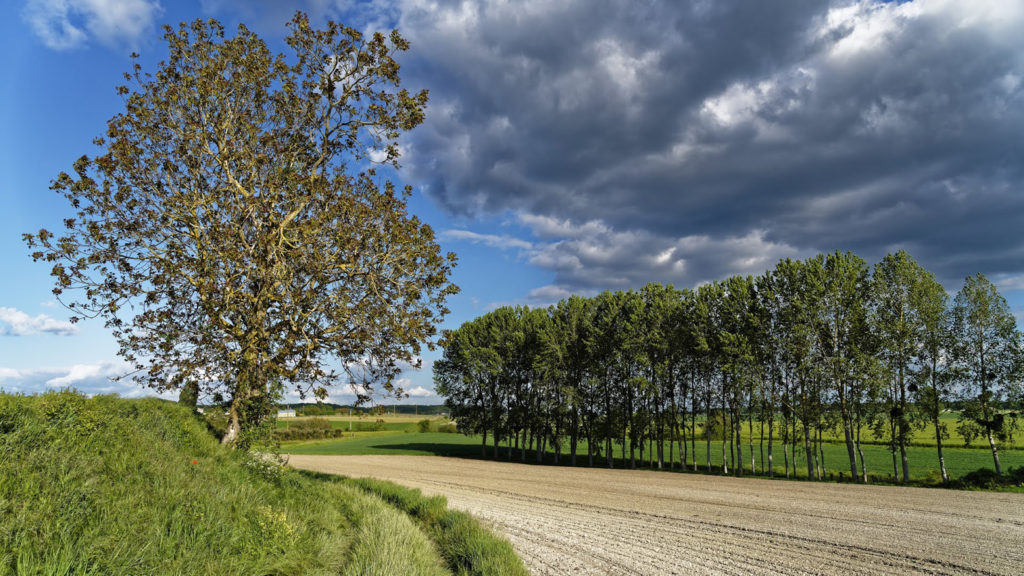 Prix Daniel Séguinot : « avant l'orage », Bernard Sabattié, L'Espace Photo SGdB